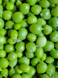 Peas are high in fiber and a great addition to any high fiber diet