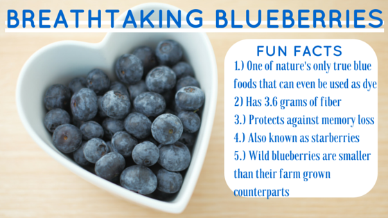 Fiber Focus Friday: Breathtaking Blueberries