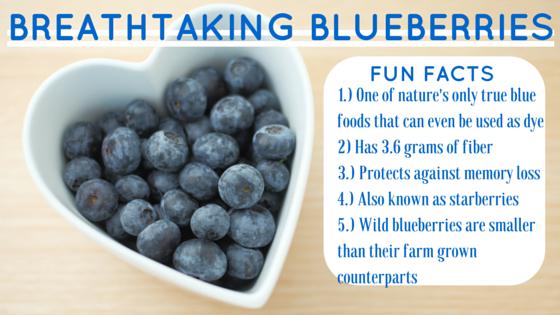 Fiber Focus Friday: Breathtaking Blueberries