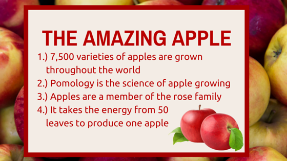 Fiber Focus Fridays: The Amazing Apple