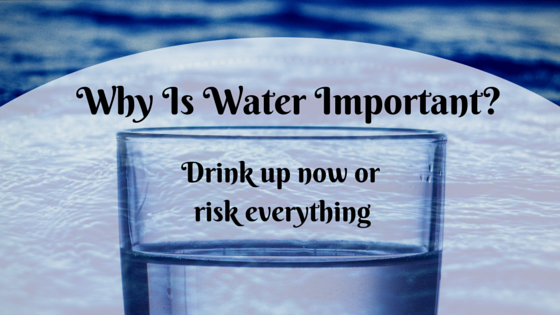 why is water important in living To stay alive, the organism takes in important materials for making energy, while shuttling out toxic substances such as waste products in this regard, water is essential simply because it's a.