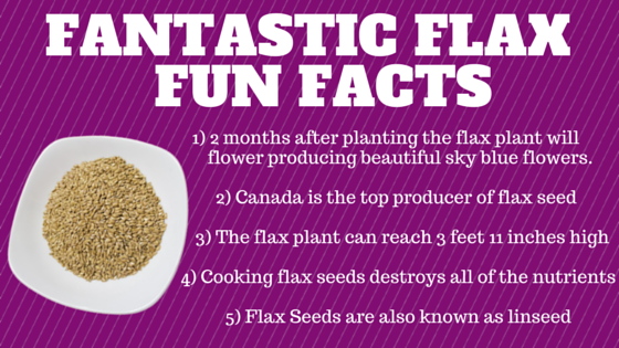 Fantastic Flax is awesome for you