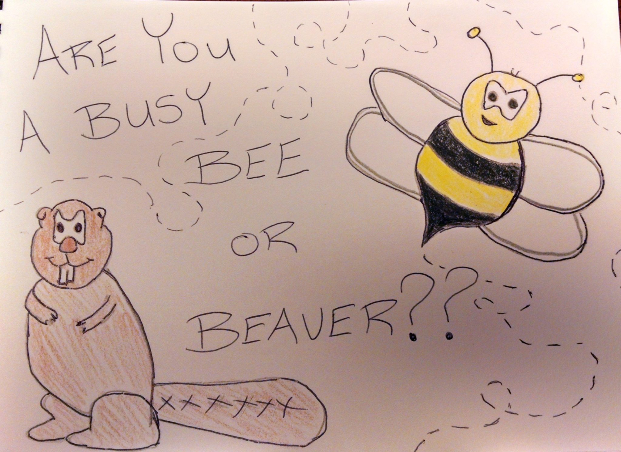 Stepping Up Your Game #2- Are you a Busy Bee or a Busy Beaver?